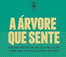 Árvore que Sente – Feeling Tree